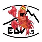 seb EDV 65